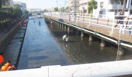 地域の活動、黒門川・菰川の川浚えです。菰川に地域の方々が入って清掃しています。